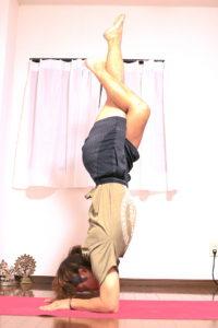 川崎ヨガKawasaki Yoga